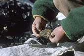 La Rinconada, hands of a little gold miner
