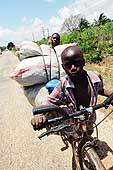 Children working for a retailer deliver fodder on Mandera Road, Dar Es Salaam.