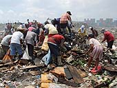 Picking up rubbish to be sorted in a dump in Manila. Philippines.
