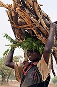 Young boy carrying wood at Mouralia area. Kéniéba, Mali.