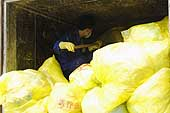 A man shoveling bags of hazardous medical waste. City of Beijing. China.