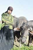 Cairo. Portrait of a young cattle farmer.