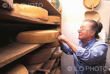 No de référence c0287 légende 30 sortes de fromages sont fabriqués