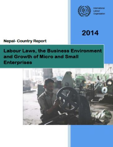 The nepalese business environment
