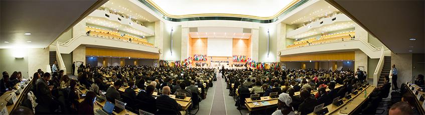 wcms 486077 CUT Auténtica presente en la 105 reunión de la Conferencia Internacional del Trabajo