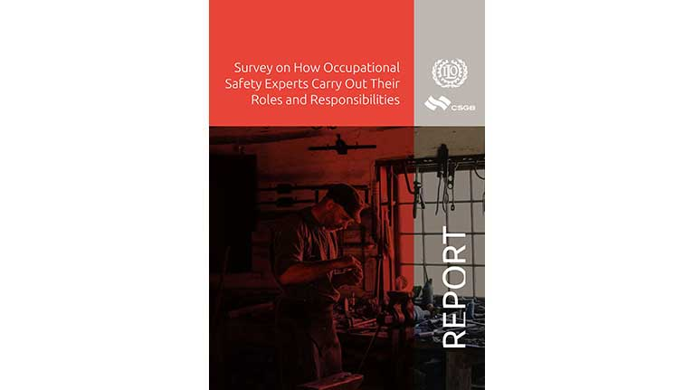 an analysis of the gender inequalities in the domestic and occupational divisions of labour Gender and gender inequalities in the domestic and occupational divisions of labour feminist concepts of gender and gender inequality allow us to refer more or less directly to a theoretical framework for understanding how they have come to form a basis that helps structure the whole of society according to the concept of patriarchy (seidman, 1994.