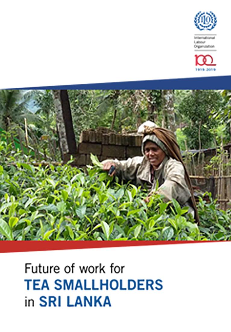 ILO in Sri Lanka (ILO in Sri Lanka)