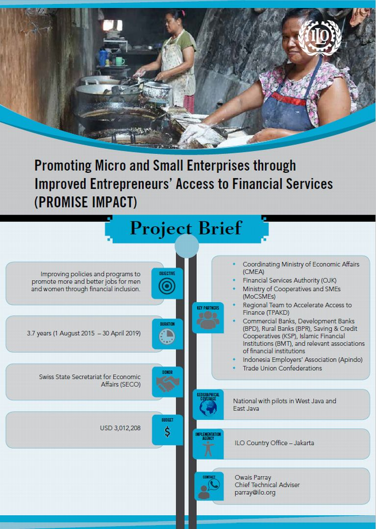 Project Brief 2018 Promoting Micro And Small Enterprises Through Improved Entrepreneurs Access To Financial Services Promise Impacts