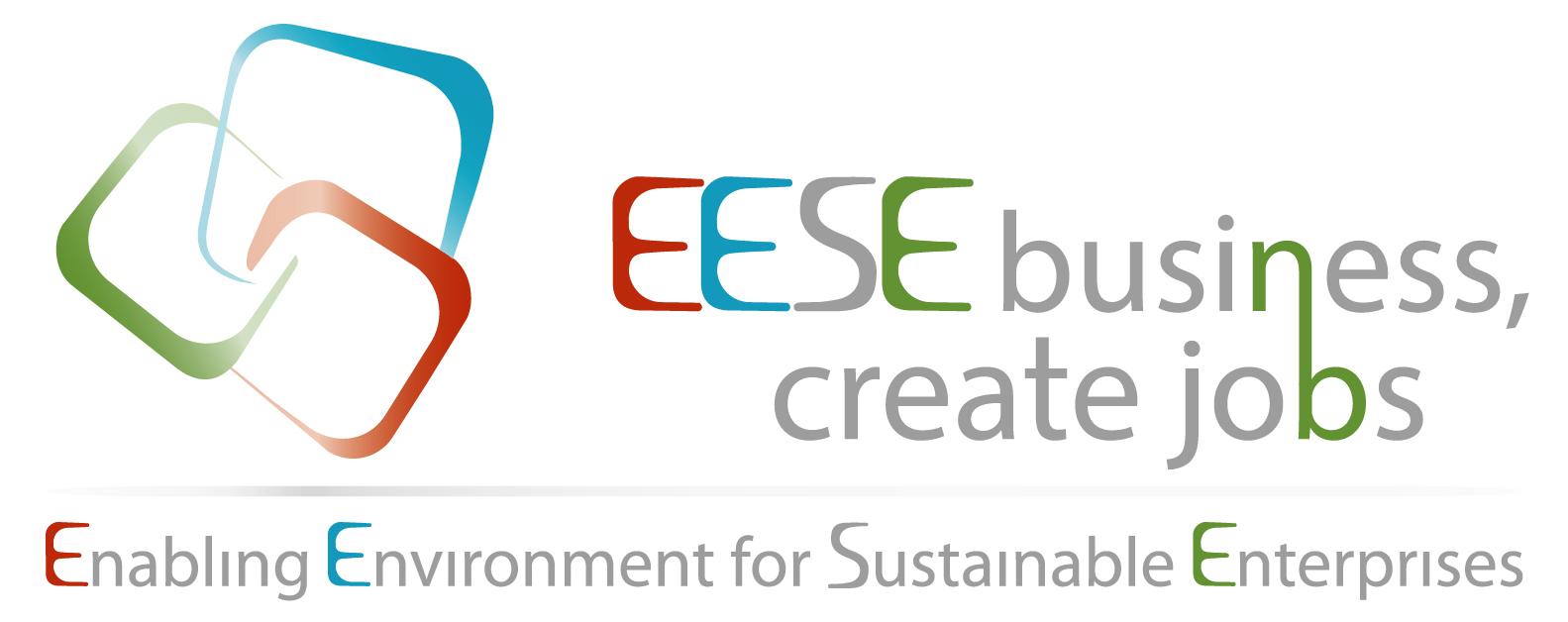 enabling environment for sustainable enterprises enterprises