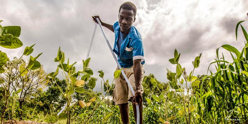 World Day Against Child Labour 2019: Children shouldn't work in