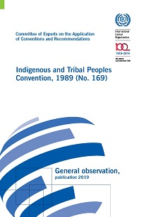 Indigenous and Tribal Peoples Convention, 1989 (No. 169) - General  observation, publication 2019